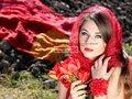 Détails : Les plus belles fleurs de la Réunion