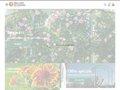Meilland Richardier Jardinerie en ligne