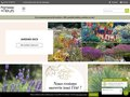 Détails : Boutique vente plante vivace, plante grimpante