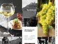 Vins d'Alsace : Cave de Ribeauvillé