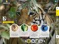 ANIMAL-SAUVAGE : AnimAdventure, portfolio d_animaux sauvages et destination gourmande par un écrivain voyageur