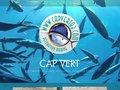 screenshot http://www.capvert83.com Moulage de poissons, crustacés en résine: cap vert