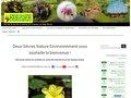 screenshot http://www.dsne.org Deux-sèvres nature environnement