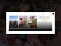 Emiliencoralie, artisan fleuriste à Lyon