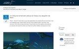 Le Blog sur les Dauphins : Site d'Actualité sur les Dauphins et les Cétacés