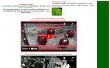 screenshot http://www.cerisiers.info informations sur les cerisiers