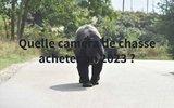 screenshot http://www.chassepassion60.com/ chasse passion, spécialiste de l'arme de chasse