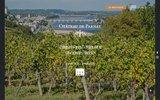 screenshot http://www.chateaudeparnay.fr saumur champigny – château de parnay – clos d'antoine cristal