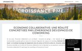 screenshot http://www.croissance-pme.com/ courtier en credit professionnel