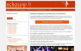 screenshot http://www.echassier.fr compagnie d'échassiers