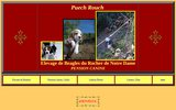 screenshot http://www.elevage-beagle.fr 01 chenil puech rouch