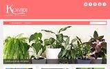 screenshot http://www.koividi.com koi vi di ?