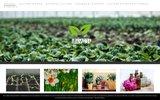 screenshot http://www.legrowshop.fr legrowshop growshop hydroponique