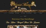screenshot http://www.mariebengal.com chatterie de bengal mariebengal