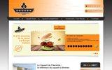 screenshot http://www.squash-rennes.com squash de l'hermine de rennes