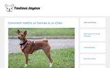screenshot http://www.toutousjoyeux.fr/ toilettage canin à saint priest lyon.