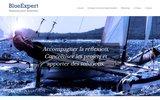 screenshot https://www.blueexpert.eu Coaching en entreprise