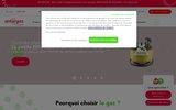 screenshot https://www.gaznaturel.antargaz.fr gaz naturel