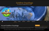 screenshot https://www.goldlineorpaillage.fr/ L'association goldline orpaillage