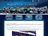 vente,coraux,correspondance,VPC,sps,lps,mous,durs,aquariophilie,récifale