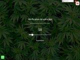 diffusion-de-cannabis-legal-therapeutique