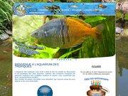 Aquarium Des Tropiques Allex