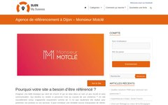 image du site http://dijon-business.fr/agence-de-referencement-a-dijon-monsieur-motcle