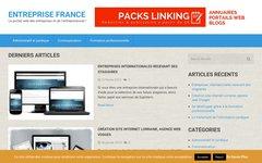 image du site http://entreprise-france.fr/