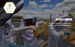image du site http://www.apiterra.fr