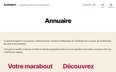 image du site http://www.esoguide.fr
