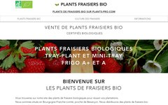 image du site https://www.plantsdefraisiersbio.com/