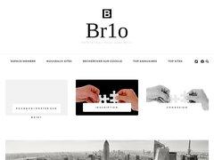 Br1o annuaire professionnel