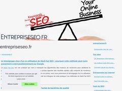 Aperçu du site Entrepriseseo.fr