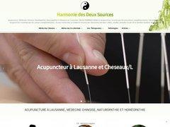 Acupuncteur à Lausanne