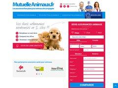 Assurance animaux domestiques