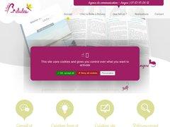 Détails : Agence de communication près d'Angers