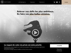 Détails : Agence Scenarii - Communication Globale & Relations Presse