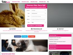 Détails : Vacciner son chat : L'intervention de la mutuelle