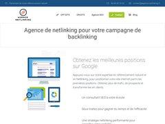 Détails : Agence Netlinking