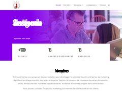 Un site web dynamique conçu à partir d'un choix de template graphiques professionnels créés par des web designers de niveau international.