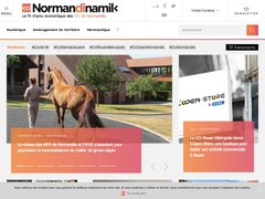 avis normandinamik.cci.fr