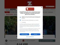 avis zinfos974.com