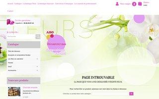 Site internet de Aux Boutons d'Or réalisé par SITTI