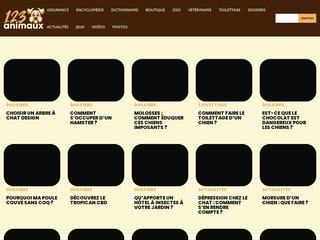 Détails : Informations animaux