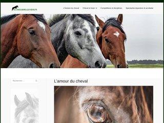 Détails : Equitation Normandie