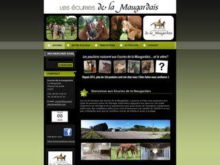 Détails : Cheval Pie à vendre Bretagne