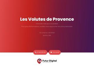 Détails : Tonnelle en fer forgé Marseille