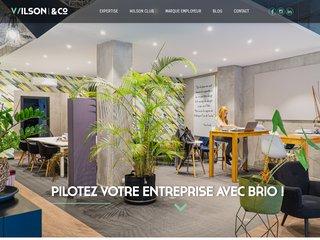 Détails : Fudiciaire wilson : cabinet comptable à Nice