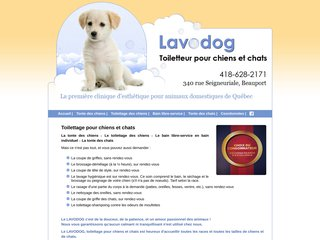 Détails : Toilettage chien et chat à Beauport Québec