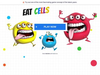 Détails : NalVald Sport Rennes